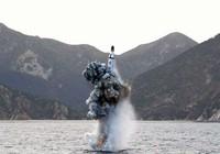 Mỹ sẽ sớm thông báo đặt tên lửa phòng thủ ở Hàn Quốc