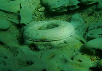 Giải mã bí ẩn 'thành phố mất tích' ngoài khơi Hy Lạp