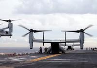 Nhật đòi quân Mỹ ngưng dùng mẫu trực thăng tai tiếng