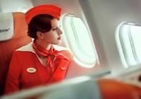 Vẻ đẹp kiều diễm của các tiếp viên hãng hàng không Nga