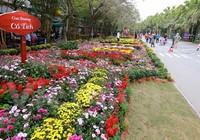 Thích thú với lễ hội hoa xuân lớn nhất miền Bắc