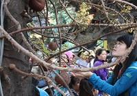 Nhiều người đến chùa dịp rằm tháng bảy