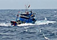 Tàu nước ngoài đâm chìm tàu cá Bình Thuận