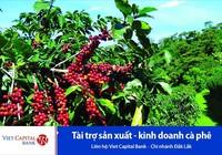 Viet Capital Bank ưu đãi cho vay sản xuất, kinh doanh cà phê