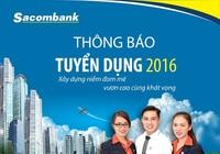 Sacombank tuyển dụng 800 nhân sự mới