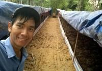 Giấc mơ phân trùn quế và nông nghiệp hữu cơ bền vững