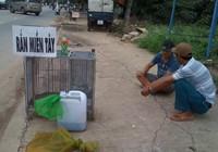 Rắn độc xuống đường phố Biên Hòa