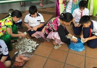 Học sinh tiểu học nuôi heo đất giúp bạn đón tết