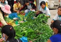 Kết luận của Ban Bí thư về vấn đề an toàn thực phẩm