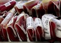 Viên chức GTVT hiến máu vì nạn nhân giao thông