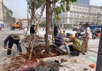 Ngày 29-4, 'mở cửa' phố đi bộ Nguyễn Huệ