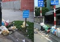 Đổ rác bừa bãi giữa phố