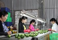 Để Hàn Quốc hút hàng Việt: Cách nào?