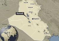 Ramadi thất thủ, quân đội Iraq bị một vố đau
