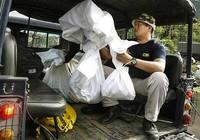 Malaysia tìm thấy 130 hố chôn người tị nạn