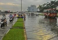 Cơn mưa ngắn 'nhấn chìm' đại lộ hiện đại