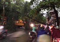 Hà Nội: Giông lốc khủng khiếp, cây đổ, xe lật, nhà bật móng