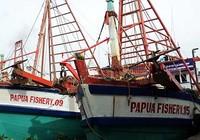 Tàu cá mắc 'bẫy', không được ra khơi