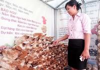 Nấm linh chi Việt thất thế trên sân nhà