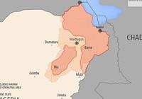 Các nước châu Phi bắt tay đánh Boko Haram
