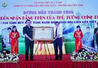 Có thể thu giấy phép của Liên kết Việt