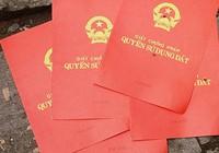 Mất 3.000 phôi giấy đỏ, kỷ luật cục phó Bộ TN&MT