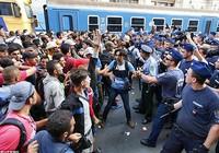 Dân nhập cư gây náo động tại nhà ga quốc tế