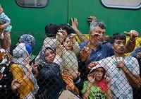 Châu Âu cứu người tị nạn: Khi nhà giàu rơi nước mắt