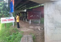 Buộc di dời một trại hòm dưới gầm cầu