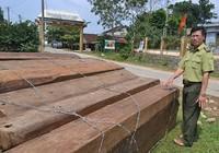 Nhận hối lộ của lâm tặc, cả trạm bảo vệ rừng bị bắt