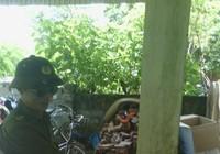 Chuyển nạn nhân bị trạm trưởng y tế chém ra Hà Nội cấp cứu