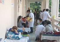 Cuối năm 2017, sẽ có vaccine sốt xuất huyết?