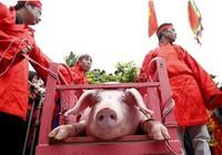 Không chém lợn giữa sân đình trong lễ hội làng Ném Thượng