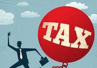 Một công ty có dấu hiệu trốn thuế hơn nửa tỉ đồng