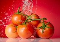 Xây dựng chuỗi kho lạnh bảo quản dưa hấu, cà chua