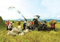 Nông nghiệp cần được hỗ trợ phát triển
