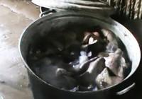 Khô bò làm từ phổi heo và hóa chất
