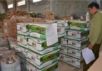 Chưa xử lý dứt điểm vụ sản xuất phân bón 'made in USA'