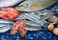 EU trả 27 lô hàng thủy sản về Việt Nam