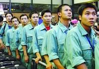 Nhiều doanh nghiệp xuất khẩu lao động xếp hạng thấp
