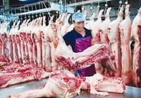 Trung Quốc mua heo 'khủng' là bình thường