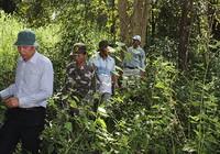 Khảo sát khu vực sẽ làm đường xuyên rừng Cát Tiên