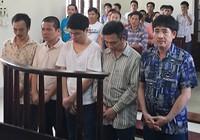 Một phiên tòa, năm bị cáo được trả tự do