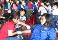 Hàng ngàn người hiến máu trong ngày 'Chủ nhật đỏ'