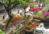 Hoa miền Tây, Đà Lạt đổ về TP.HCM