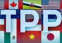 Nhiều doanh nghiệp nghĩ TPP như 'chiếc đũa thần'