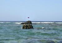 Nhật sẽ đưa tranh chấp biển Hoa Đông ra tòa án quốc tế