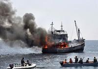 Ngư dân Trung Quốc vẫn gia tăng đánh bắt trái phép