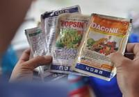 Truy quét thuốc bảo vệ thực vật nhập lậu