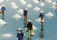 Đảm bảo chất lượng nước biển làm muối
